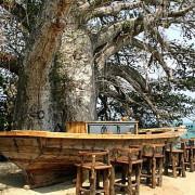 Fumba Beach Lodge22