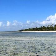 The Palms Zanzibar26