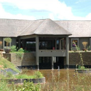Serengeti Four Seasons 14